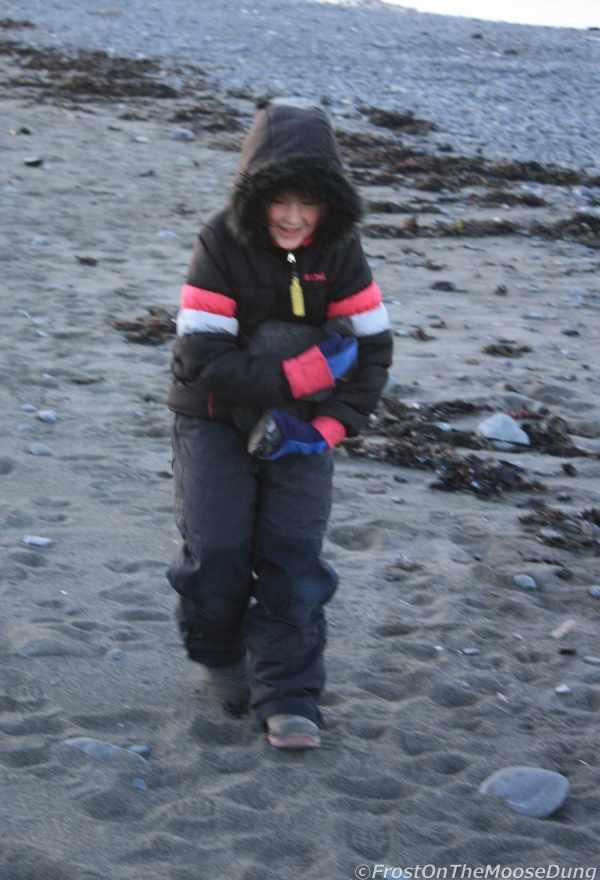 beachcoal2